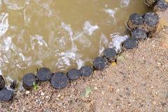 Деревянные stubs гребут на речном береге - реке границы обваловки Стоковые Изображения RF