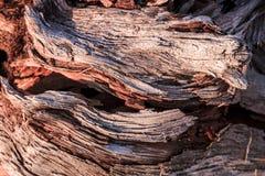 Деревянный абстрактный состав Стоковые Изображения