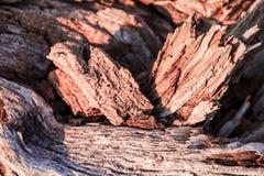 Деревянный абстрактный состав Стоковое фото RF