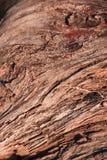 Деревянный абстрактный состав Стоковые Фотографии RF