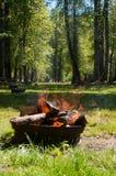 Деревянный лагерный костер Стоковые Изображения RF