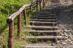 Деревянный вверх водить к верхней части холма стоковые изображения rf
