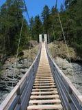 Деревянный висячий мост в ущелье Viamala Стоковые Фото