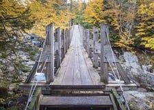 Деревянный висячий мост Стоковое Изображение RF