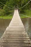 Деревянный вися мост в пуще. стоковая фотография