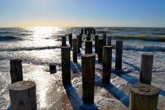 Деревянный вносит дальше берег в журнал океана Стоковая Фотография