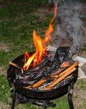 Деревянный вносит дальше огонь в журнал, внешний огонь для барбекю, покрашенных пламен Стоковое фото RF