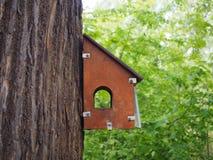 Деревянный высекаенный birdhouse на пне дерева, фидере для птиц в парке стоковое изображение rf