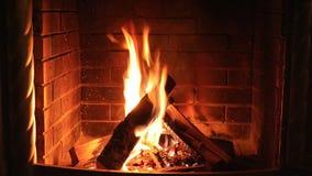 Деревянный горящий камин акции видеоматериалы