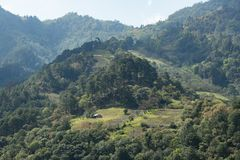 Деревянный дом среди леса в горах Мексики стоковые фотографии rf