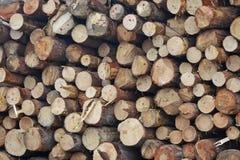 Деревянный запас Стоковое фото RF
