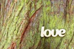 Деревянный знак влюбленности на предпосылке ствола дерева Стоковое Фото