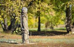 Деревянный идол Стоковые Изображения RF