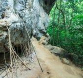 Деревянный камень подстенка Стоковая Фотография
