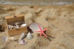 Деревянный комод вполне Seashells Стоковое фото RF