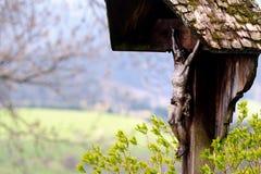 Деревянный крест обочины стоковые фотографии rf