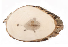 Деревянный кусок Стоковое Изображение