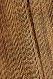 Деревянный макрос предпосылки Стоковая Фотография