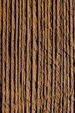 Деревянный макрос предпосылки Стоковое Изображение RF