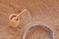 Деревянный миномет, зерна пшеницы в металлическую сетку Взгляд сверху, текстура зерен пшеницы стоковые фото