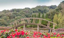 Деревянный мост в горе Таиланда стоковое изображение