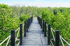 Деревянный мост в естественном стоковое фото rf