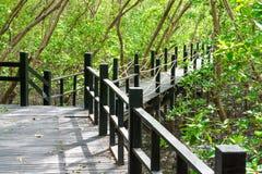 Деревянный мост в естественном стоковые фотографии rf
