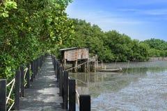 Деревянный мост в естественном стоковое фото