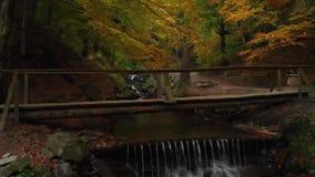 Деревянный мост в национальном парке Водопад в пуще осени видеоматериал