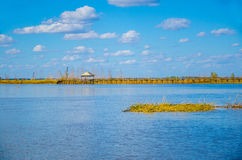 Деревянный мост в озере Стоковые Фотографии RF