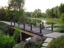 Деревянный мост в озере Стоковые Изображения