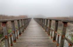 Деревянный мост в природе на туманный день Стоковое Изображение RF