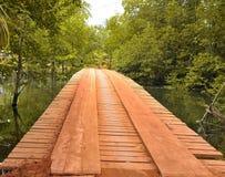 Деревянный мост в пуще стоковое изображение rf