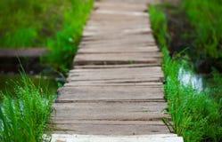Деревянный мост в пуще Стоковые Изображения