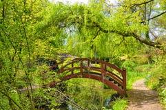 Деревянный мост в японском саде Стоковая Фотография RF