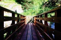 деревянный мост горы с стробом для того чтобы предотвратить избежание животного стоковые фотографии rf