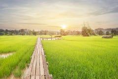 Деревянный мост 100 лет Стоковая Фотография