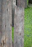 Деревянный мост на зеленом озере (селективный фокус) Стоковые Фото