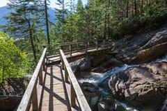 Деревянный мост над идущим рекой на тропе стоковое изображение rf