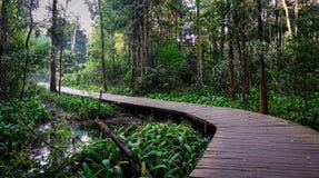 Деревянный мост на парке города стоковая фотография rf