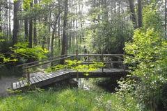 Деревянный мост над потоком в лесе Стоковое Фото