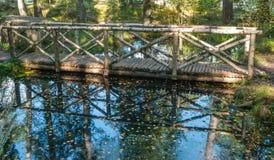 Деревянный мост над потоком в древесинах Стоковая Фотография