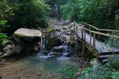 Деревянный мост над потоком горы в лесе Стоковое Изображение RF