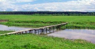 Деревянный мост над рекой в зеленом поле около леса Стоковое Изображение RF
