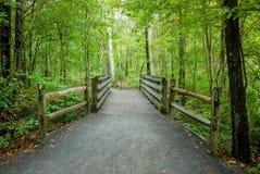 Деревянный мост над следом природы Стоковая Фотография