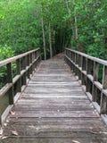 Деревянный мост Стоковая Фотография RF