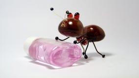 Деревянный муравей и сладостный Mouthwash Стоковое Фото