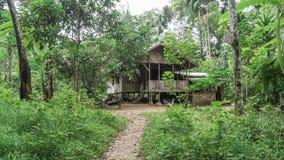 Деревянный дом джунглей Стоковое фото RF