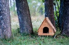 Деревянный дом собаки Стоковые Фото
