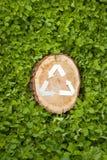 Деревянный отрезок на траве и рециркулирует символ Стоковые Фото